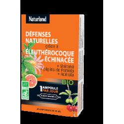 Acérola, eleuthérocoque, shiitaké, echinacée Bio 20 ampoules - Naturland