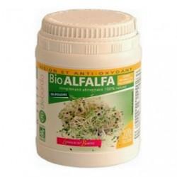 Alfalfa bio en poudre de bardo
