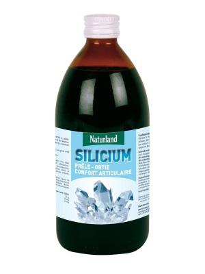 silicium organique prele ortie