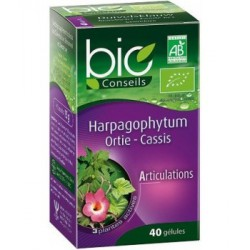 Harpagophytum Ortie Cassis 40 gélules - Bio Conseils