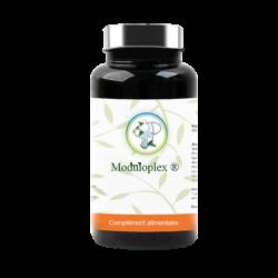 Moduloplex Gastro-resistant 90 gélules Planticinal