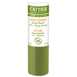 Baume à lèvres réparateur ultra nourrissant Olive Mangue 4 gr Cattier
