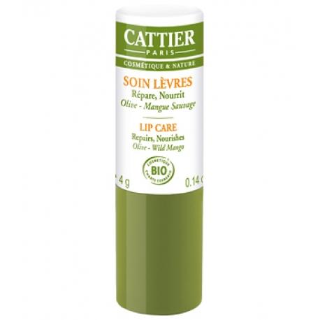 Baume à lèvres réparateur ultra nourrissant Olive Mangue 4 gr Cattier Paris
