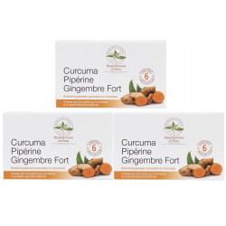 Curcuma pipérine gingembre fort modèle cure de 3 x 60 comprimés Herboristerie de Paris