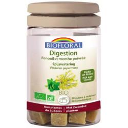 Cubes à mâcher Digestion 60 cubes Biofloral ballonnements gaz Bio sante senior