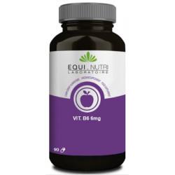Vitamine B6 90 gélules végétales Equi Nutri