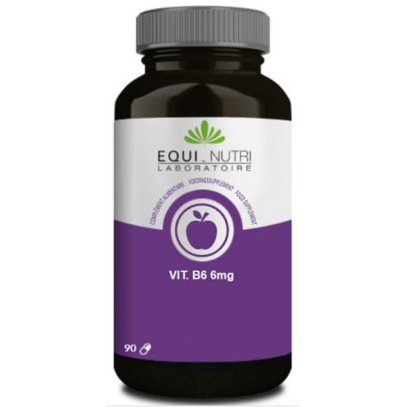 Vitamine B6 90 gélules végétales Equi Nutri bio sante senior