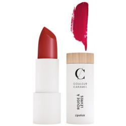 Rouge à lèvres Naturel Mat No 120 Rouge Sombre 3.5g Couleur Caramel maquillage certifié des lèvres Bio santé sénior