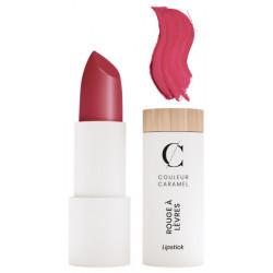 Rouge à lèvres Mat No 121 Rouge Brique 3.5g Couleur Caramel charme et glamour Bio santé sénior