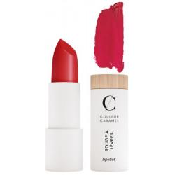Rouge à lèvres Naturel Mat No 122 Rouge Groseille 3.5 gr Couleur Caramel maquillage  minéral lèvres Bio santé sénior