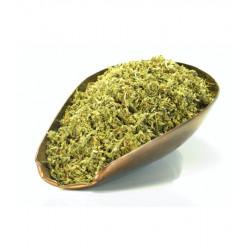 Damiana feuille coupée 100g Herboristerie de Paris Turnera diffusa var. aphrodisiaca Bio santé sénior