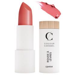 Rouge à lèvres satiné No 261 Rose gourmand 3.5g Couleur Caramel chaleureuse brillante naturelle Bio santé sénior