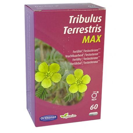 Tribulus terrestris 650 Bien être masculin 60 gélules Orthonat Nutrition vigueur masculine Bio santé sénior