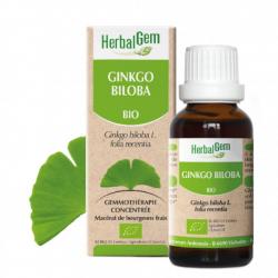 Ginkgo Biloba bio 50ml Herbalgem