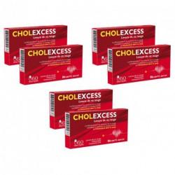Cholexcess 3 lots de 2 boîtes de 60 capsules