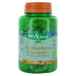 Complexe Harpagophytum Reine des Prés 200 gélules- Nat et Form