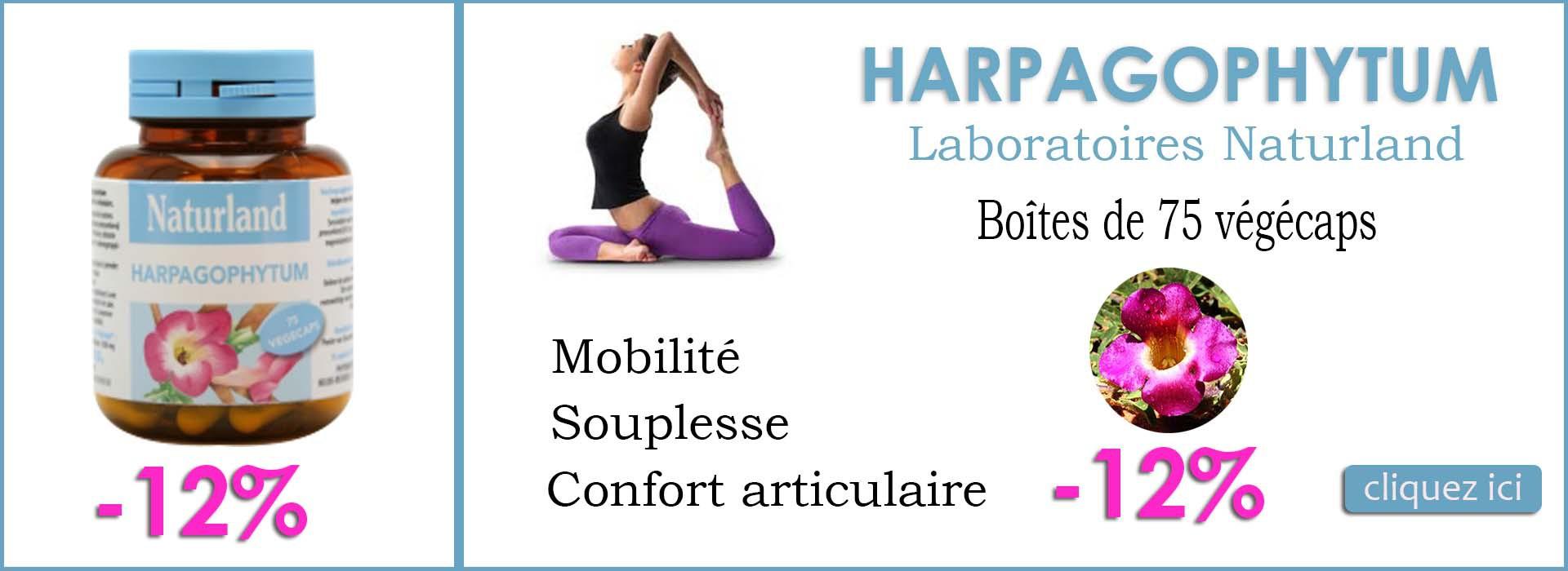 Articulations - Harpagophytum -12%