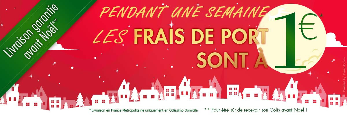 Frais de port à 1 euro pour les fêtes de Noel !